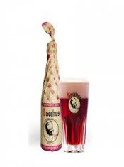 bacchus morello cherry beer